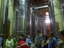 Stainless steel modern fermentation tanks